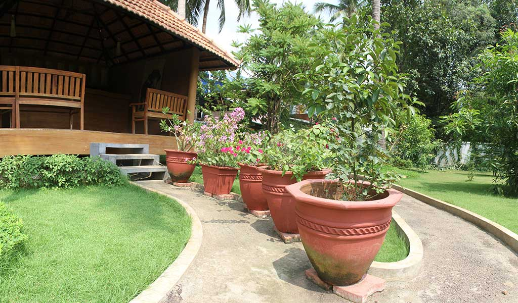 back front small yard garden design ideas kerala the inspirations - Garden Design Kerala
