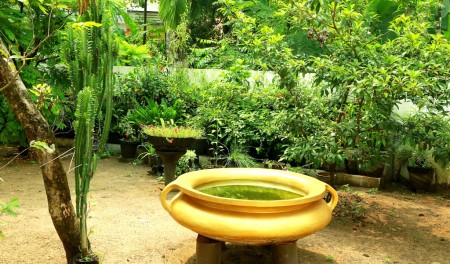 Green Planet Kerala,Landscape Design & Construction Kerala, Water Features & Lighting Kerala, Hardscape Kerala, Indoor Garden Kerala - greenplanetkerala.in