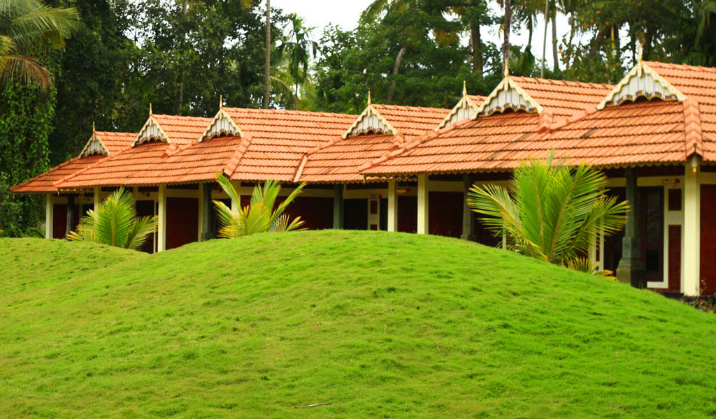 Green Planet Thrissur KeralaLandscape Design Construction